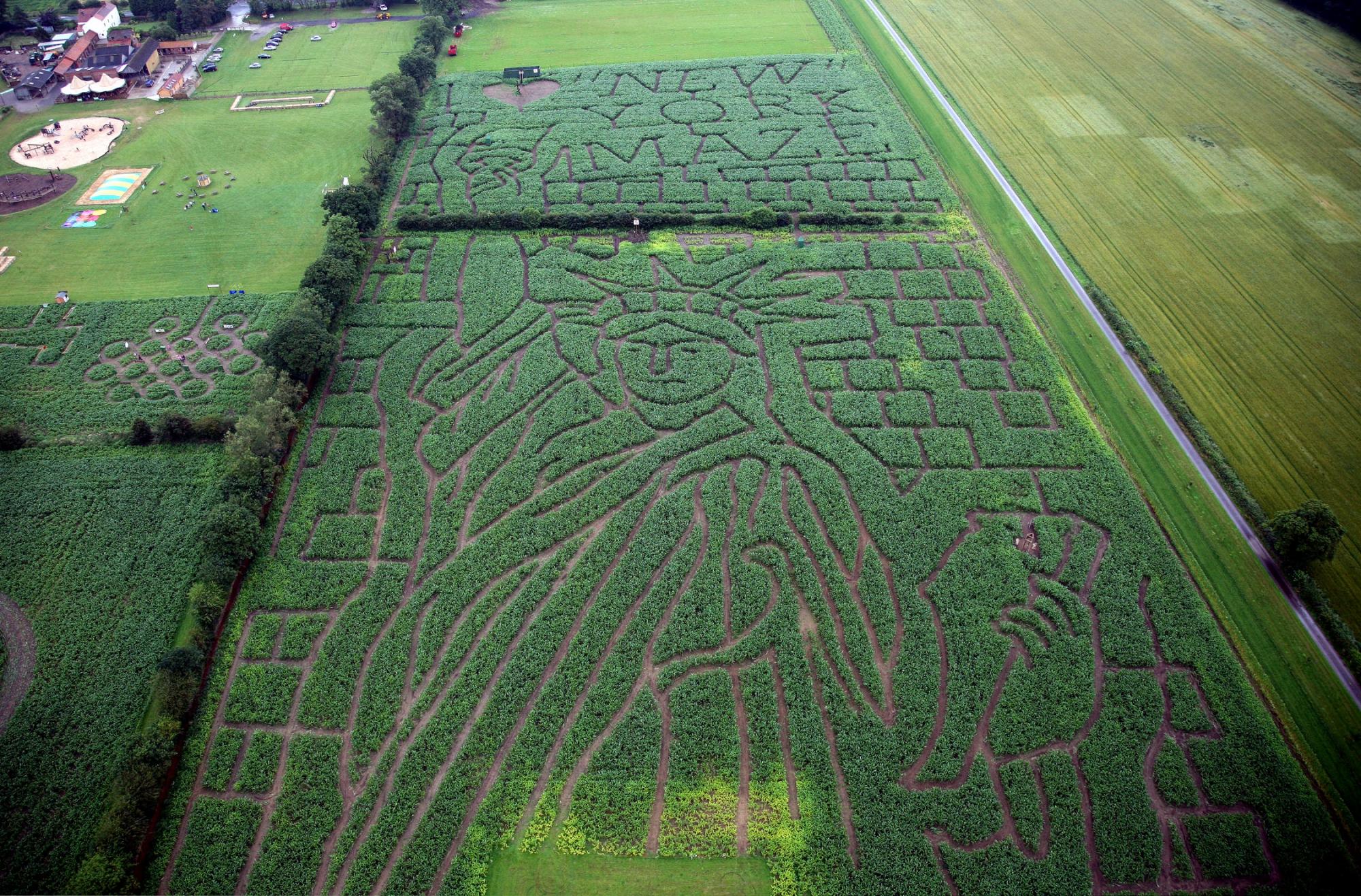 York Maze - Gallery